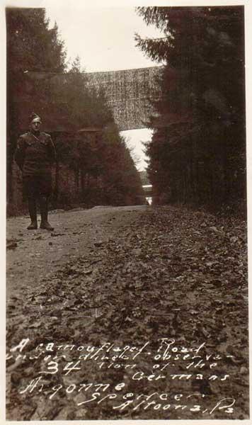 Camouflaged road in Argonne